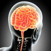 Mijmeringen over bewustzijn (3)